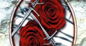 Verlogene Wahrheit - Sonderedition: Liebesthriller