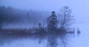 Nebel-über-München--Ein-Kommissar-Wengler-Krimi