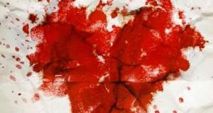 Blutiger-Vorsatz--Thriller
