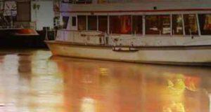 Endstation Donau: Ein Wien-Krimi