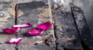 Schlimmer als dein Tod: Psycho-Krimi