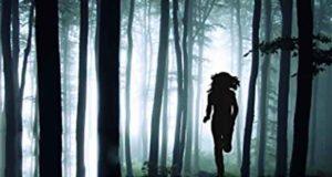 Das verschwundene Mädchen