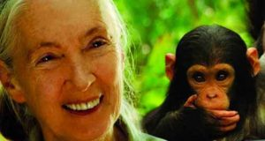Jane´s Journey: Die Lebensreise der Jane Goodall