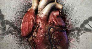 Mein ist Dein ganzes Herz: Ein Bleidorn- und Svensson-Krimi