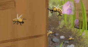 Summ, summ, summ ... Wer mordet hier herum? (A.C. Bumblebee 2)