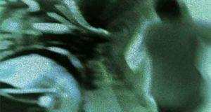 Von Engeln und Schlangen: Thriller