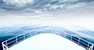Weiße Rosen und die Titanic