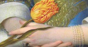 Der Zorn der Tulpenkönigin