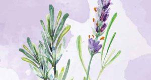 Umhüllt- Im Mantel von Rosmarin und Lavendel