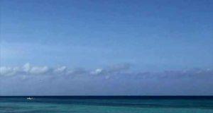 Long Life Island