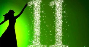 Die 11 Gezeichneten: Das zweite Buch der Sterne