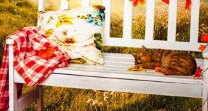Herbstfunkeln: Cornwall Seasons 1