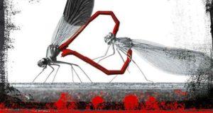 Der Flug der Libellen