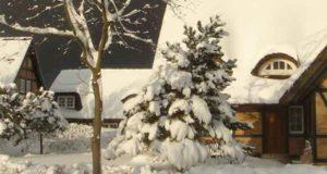 Die Schneemänner