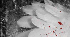 Die Blutengel: Kriminalroman
