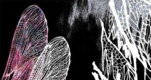 Schatten der Dunkelheit: Glaube