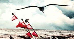 Todesstrand: Ein Ostsee-Krimi