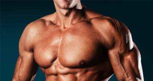 Muskelaufbau: Das Fitness Buch