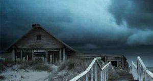 Sonne, Strand und Tod: Ein Kees Bloemberg Krimi