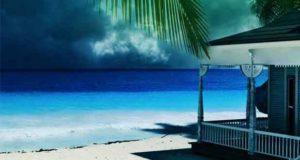 Das Geheimnis von Palau: Roman