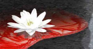 Tödlicher Juni (Manzini - Marnaud 2)