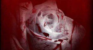 Die Blutsklavin