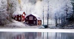 Die Kälte im Herzen: Schwedenkrimi