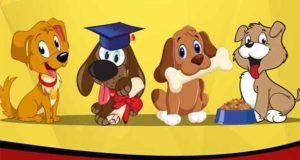 Welpenerziehung, Hundeerziehung, Hundespiele, BARF