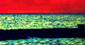 Ein Fall für Fuchs & Haas: Das Fischbrötchen des Todes - Krimi