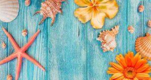 Summer in my pocket: Sonnige Geschichten