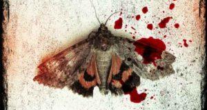 Mordfinsternis: Psychothriller
