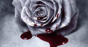 Im Schatten der Dämmerung: Gefährliche Liebe eines Vampirs