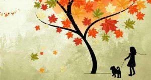 Die Schatten des goldenen Septembers