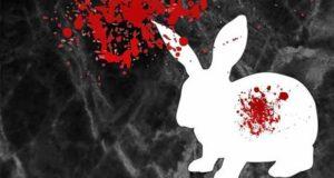 Dead White Rabbit: Der Untergang