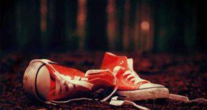 Teufelswild: Thriller