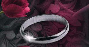 Dark Falling - Schatten der Vergangenheit: Liebesroman