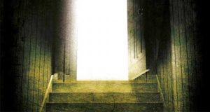 Tief im Keller: Kriminalroman