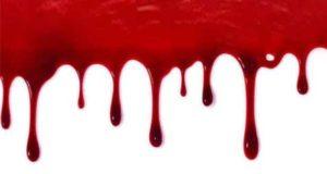Blutiger Rausch: Der Richter
