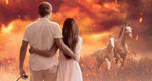 Wie Feuer und Eis: Liebesroman